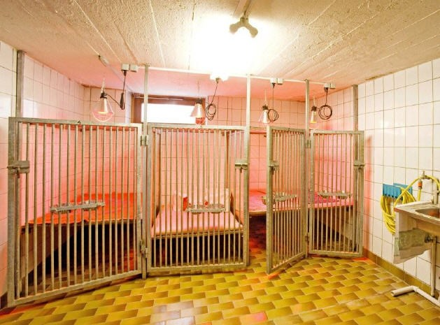Tierstation 1